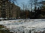 snow on Dec 5th 2005 - 2.jpg